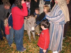 donkey and Caden